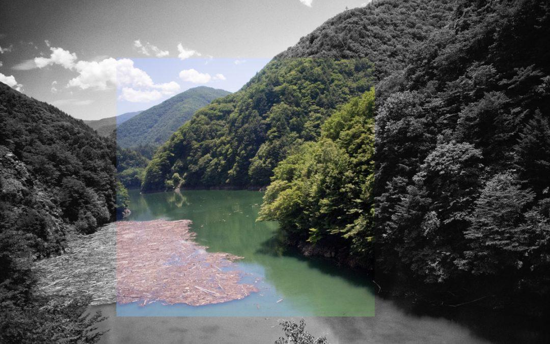 ImageSurMesure au Japon